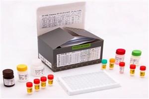 کیتهای ویتامین D3 تولید شد