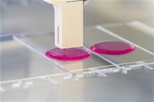Iranian Researchers Create Domestic Bio-Ink