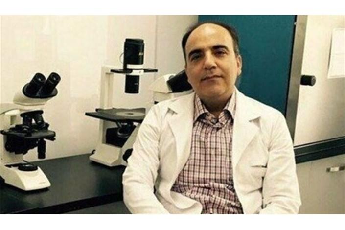 مسعود سلیمانی