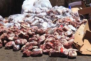 ورود مدعی العموم به عرضه گوشتهای فاسد در ایرانشهر/ ۲۷۵۰ کیلوگرم گوشت فاسد معدوم شد