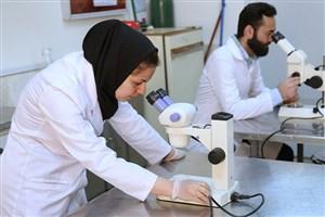 مبالغ پژوهانه با تأخیر به پژوهشگران پرداخت میشود/ تحریم مانع چاپ مقالات ایرانی در مجلات بین المللی