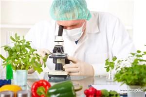 کتاب «روغنهای خوراکی» مرجع دانشجویان رشته صنایع غذایی است