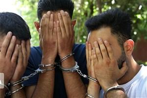 دستگیری عوامل تیراندازی افسریه تهران