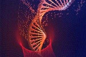 AUT Researchers Develop Novel Hybrid Piezoelectric Structure