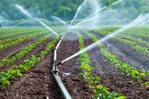 کاهش 50 درصدی مصرف آب با استفاده از سیستمهای نوین آبیاری