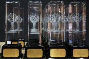 ۱۳ شرکت فناوری نانویی تقدیر شدند