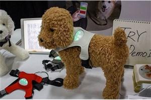 تولید لباسی که احساس سگها را نشان میدهد