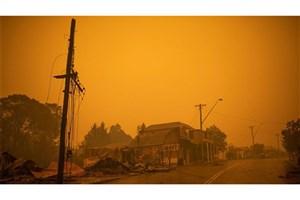 Australia's Largest Fire Kills At Least Millions of Animals and 24 People