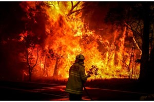How Technologies Can Help Fight Bushfire?