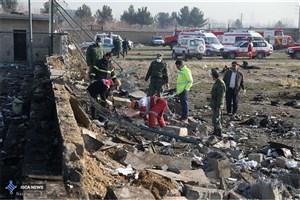 هواپیما پس از برخورد به زمین منفجر شد