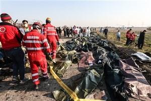 قوه قضائیه با خاطیان حادثه سقوط هواپیمای اوکراینی برخورد کند