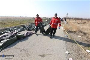 شناسایی ۵۰ پیکر از جانباختگان حادثه سقوط هواپیمای اوکراینی+اسامی