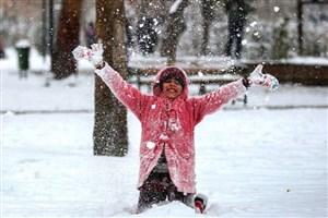 بارش برف در تهران از دوشنبه / هوا ۱۵ درجه سردتر میشود