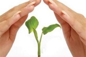 زیستبوم نوآوری در صنعت بیمه گسترش مییابد