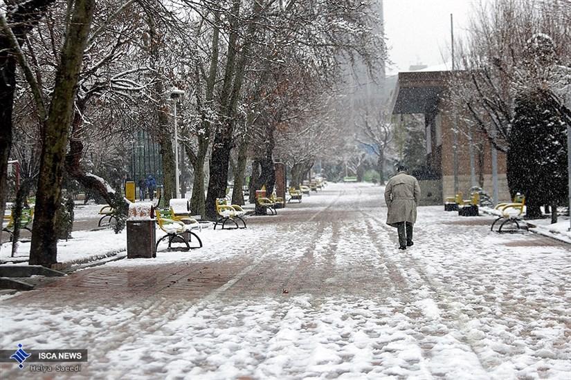 روز برفی شهر تهران