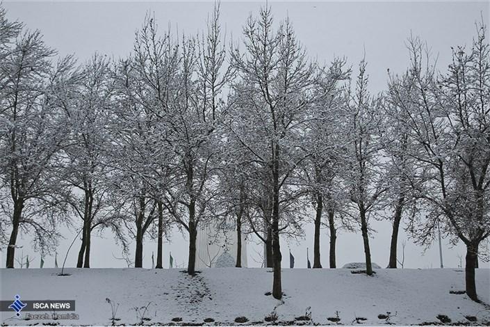 بارش برف زمستانی در شهر تهران