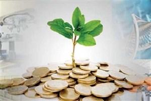 اقتصاد نفتی مانع توسعه کسبوکارهای دانشبنیان