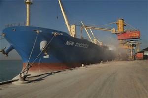 واردات خوراک دام ذرت، کنجاله و جو به کشور/خرید تضمینی گوساله زنده کیلویی 27 هزار تومان