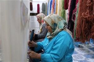 90 هزار شغل جدید روستایی توسط بنیاد برکت ایجاد شد