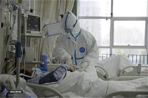 تعداد مبتلایان به کروناویروس در جهان/ تاکنون ۴۹۲کشته و ۲۴هزار نفرمبتلا شدند