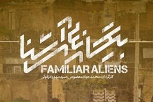 «بیگانههای آشنا» روی آنتن شبکه سه/ نمایش زحمات حاجقاسم در سیل امسال