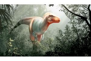 """کشف فسیل 11 میلیون ساله """"فرشته مرگ"""" در کانادا"""