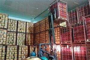 صادرات ۱۲۰۰ تن  محصولات کشاورزی منطقه ارسباران به کشورهای همسایه