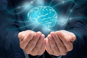 فعالیت در هستههای مشاوره برای دانشجویان روانشناسی رزومه کاری محسوب میشود