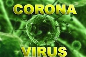 تنها راه برای مقابله با ویروس کرونا پیشگیری است/ روند ساخت واکسن 18 ماه طول می کشد