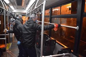 اتوبوسهای تهران ۴ بار در روز ضدعفونی میشوند