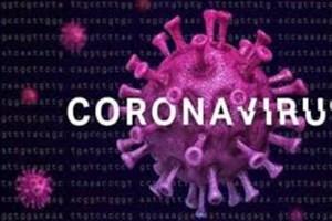 چگونه کرونا ویروس را مهار کنیم؟
