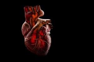 ارتباط مرموز بین ویروس کرونا و قلب