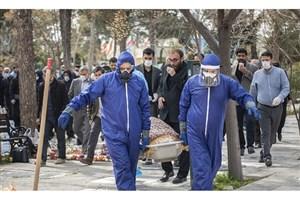 ابتلای 7 نفر در بهشتزهرا به کرونا/فروش مجازی در 13 میدان میوه و ترهبار