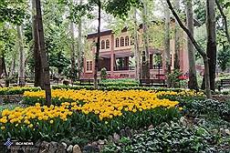 Tehran Persian Garden Hosting Tulips/ In Photos