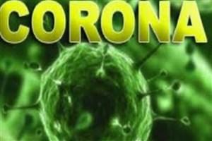 تولید 10 محصول برای مقابله با ویروس کرونا