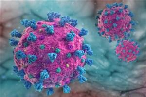 شاهراه ورود ویروس کرونا به بدن کجاست؟