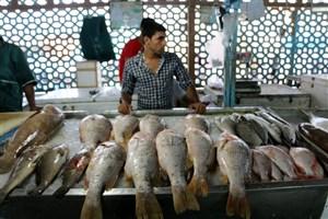 کاهش قیمت ۳۴ نوع ماهی در میادین میوه و تره بار