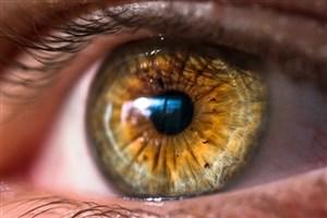 چشم ها چگونه خود را تمیز میکنند؟