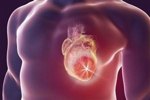 ارتباط ضربان قلب با قدرت توجه