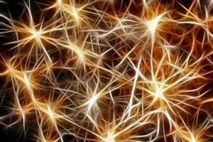 نورون های تنظیم کننده قند خون پیدا شدند