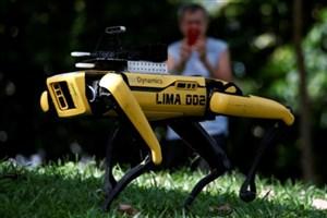 همراهی ربات برای کنترل فاصله اجتماعی+فیلم