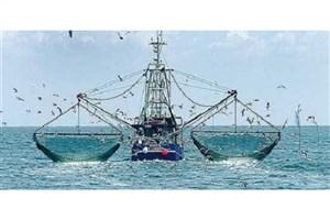 توقیف ۴ فروند کشتی صید ترال در بندرعباس
