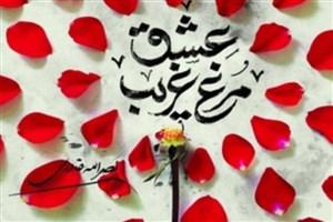 نصرالله قادری «مرغ غریب عشق» اثری درباره شهید شاهآبادی را نوشت