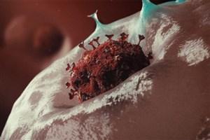 نانوواکسن استنشاقی ضدویروس کرونا در مسیر توسعه