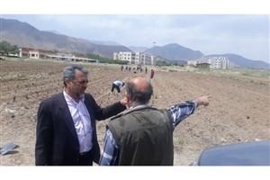 کاشت ۲ هزار بوته گیاه دارویی در زمینهای تحقیقاتی دانشگاه آزاد اراک