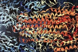 تبدیل ساختار ویروس کرونا به موزیک+ قسمت هایی از این آهنگ
