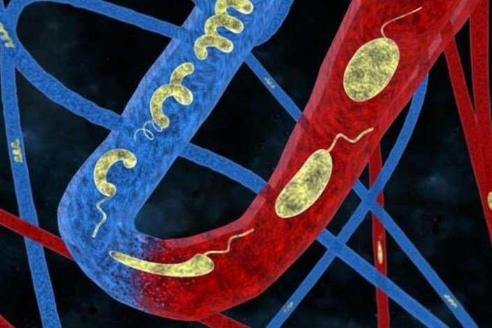 نانو ساختار