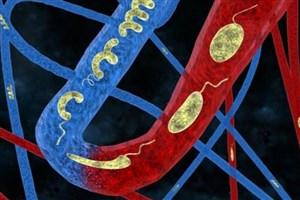 طراحی سامانه دارورسانی با کمک یک نانوساختار زیستسازگار
