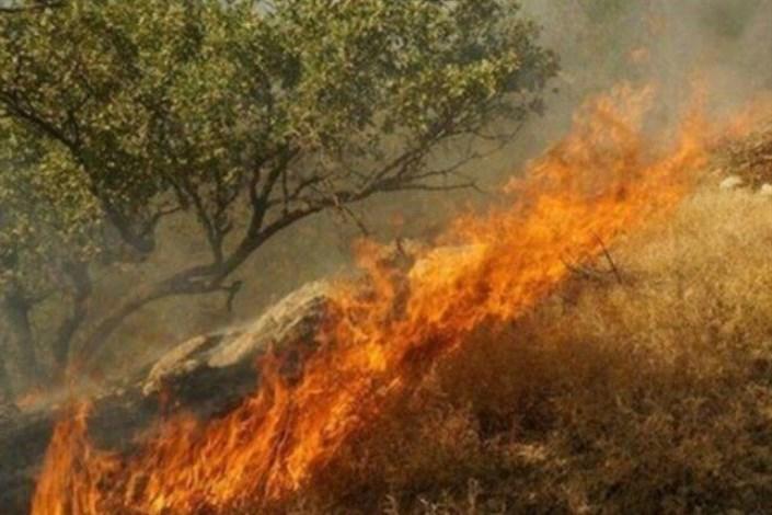 آتش سوزی در دهرود
