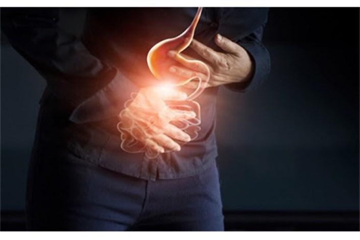 تاثیر میکروبهای طبیعی روده در پیشگیری ابتلا به بیماریهای مغزی